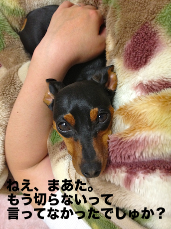 20120615-1.png