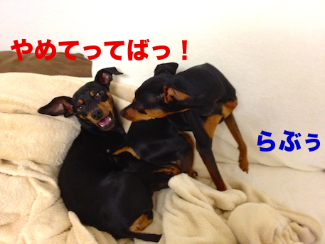 20120626-1.png