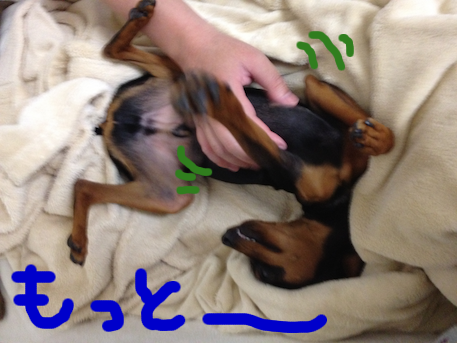 20120710-5.png