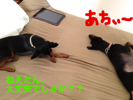 20120720-3.png
