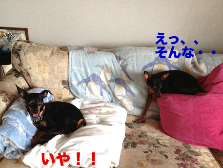 20120723-1.png
