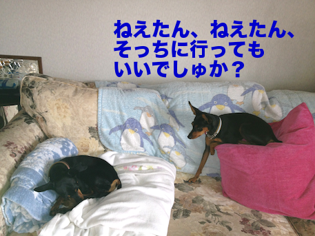20120723.png