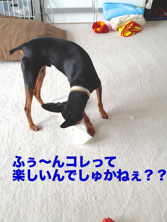 20120729-3.png