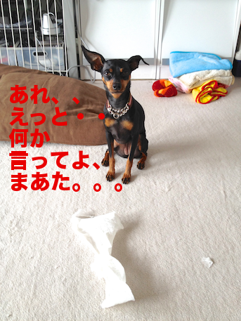 20120729-5.png