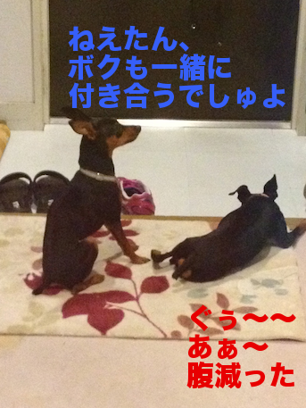 20120822-4.png