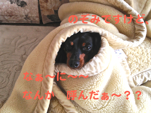 20121031-2.png