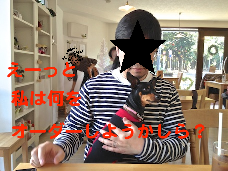 20121125-4.png