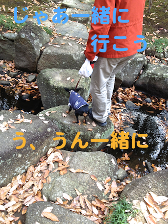 20121206-12.png