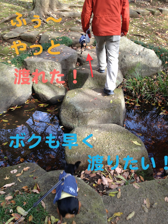 20121206-3.png
