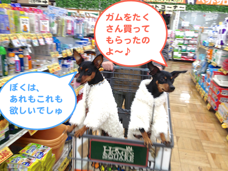 20121224-3.png