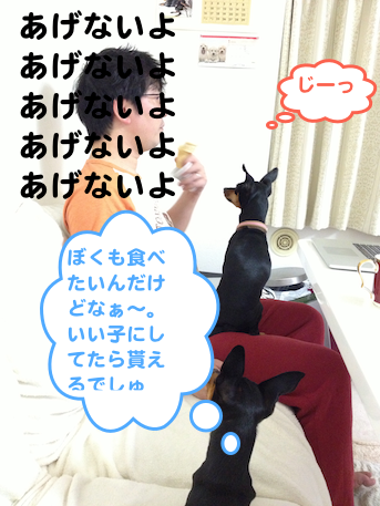 20121224-5.png