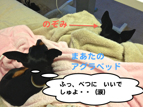 20121230-5.png