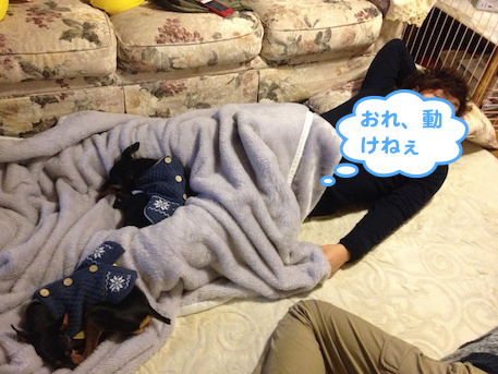 20130102-5.png
