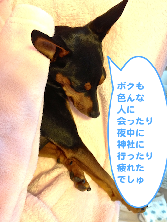 20130103-3.png