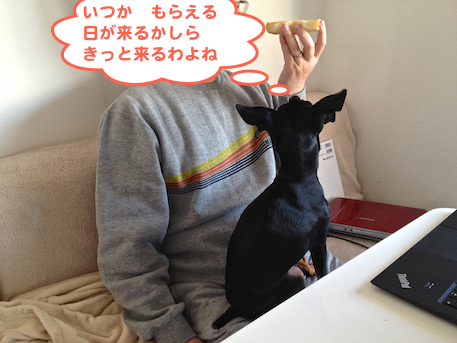 20130109-1.png