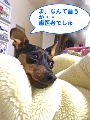 20140219-2.png