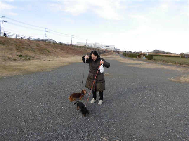 12月30日お散歩4