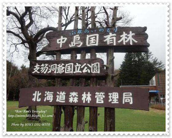 中島国有林