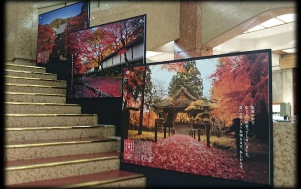 20141110_04_mitsukoshi.jpg