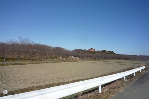 20121220-12.jpg