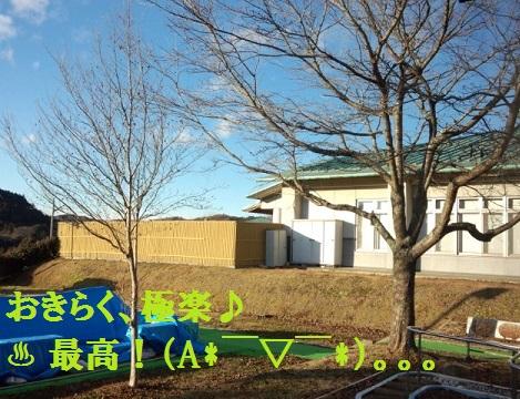 IMG_20131215_151142.jpg