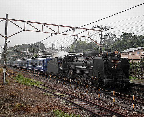 D51 498+12系「SLみなかみ織姫」(2012年7月7日・敷島)