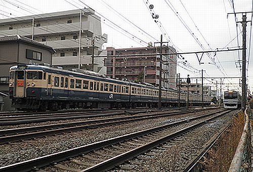 八トタ115系「ホリデー快速鎌倉」(2011年1月3日・保土ヶ谷~東戸塚間)