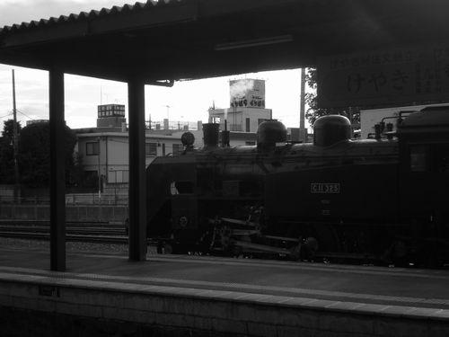 真岡鐵道C11 325号機(2012年9月1日・真岡駅)モノクロ