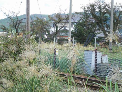 大井川鐵道五和変電所から旧・横岡駅方面を見る(2012年10月7日)