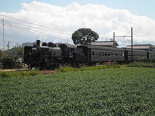 大井川鐵道SL急行101列車「かわね路1号」(C56 44)(2012年10月7日・五和~神尾間)