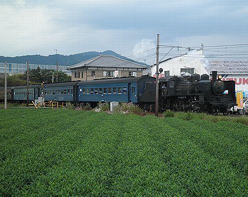 大井川鐵道SL急行102列車「かわね路2号」(C56 44)(2012年10月7日・五和~神尾間)