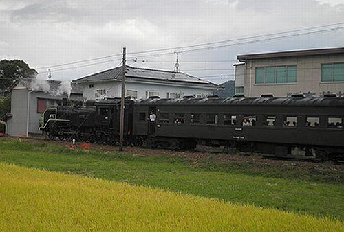 大井川鐵道SL急行1002列車「かわね路12号」(後補機C11 227)(2012年10月7日・五和~神尾間)