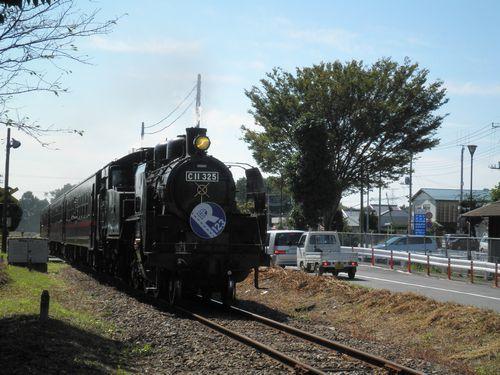 真岡鐵道C11 325「SLもおか」(2012年10月8日・ひぐち)