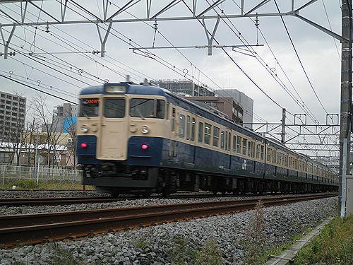 八トタ115系M40編成「立川ひまわり号」(2012年10月28日・辻堂~茅ヶ崎間)2