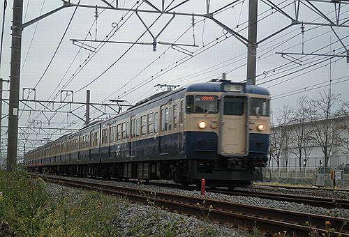 八トタ115系M40編成「立川ひまわり号」(2012年10月28日・辻堂~茅ヶ崎間)1