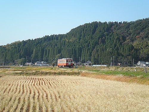 いすみ鉄道キハ52 125(2012年12月8日・西大原~上総東間)1
