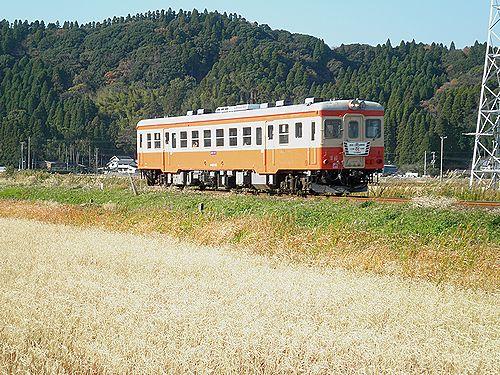 いすみ鉄道キハ52 125(2012年12月8日・西大原~上総東間)2