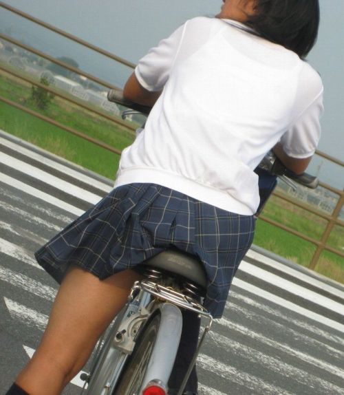 【三次画像あり】 ミニスカの女子高生が自転車に乗ってるとドキっとするよね! 53枚 part.13 No.30