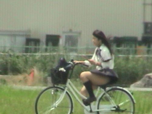 【三次画像あり】 JKがミニスカで自転車に乗ってる姿を後ろから眺めるの幸せすぎ♪ 52枚 part.12 No.5