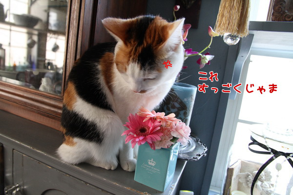20130114020338ae9.png