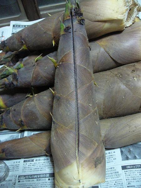 淡竹に切り目を入れる