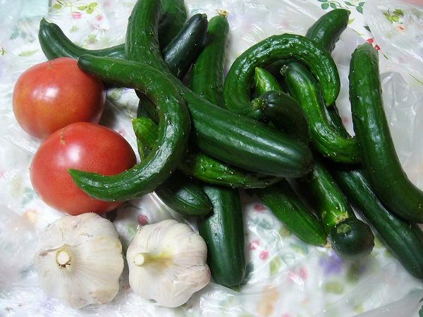 きゅうり・にんにく・トマト