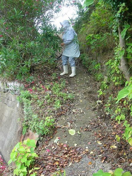 桃畑への坂道
