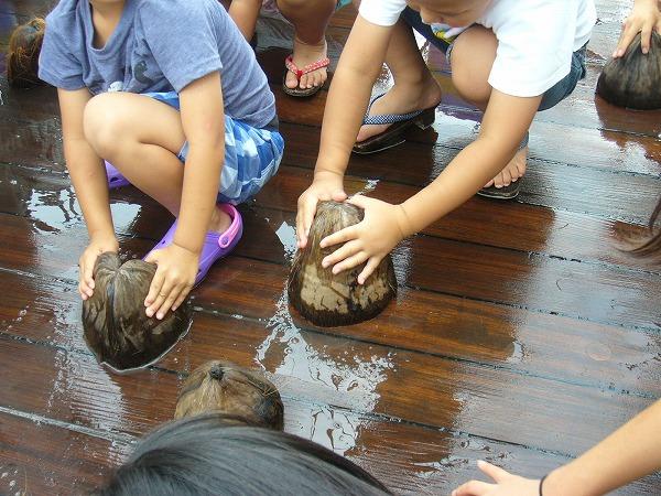 日本丸椰子の実で掃除