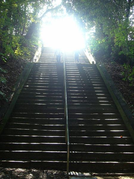 大興寺の石段
