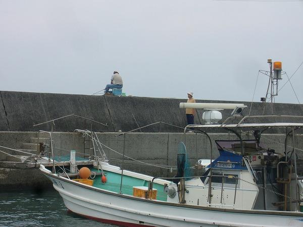 須田港 釣りも珍しい