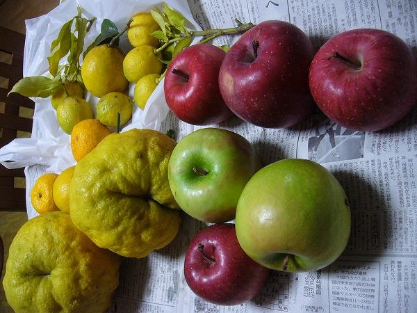 りんごと獅子柚子