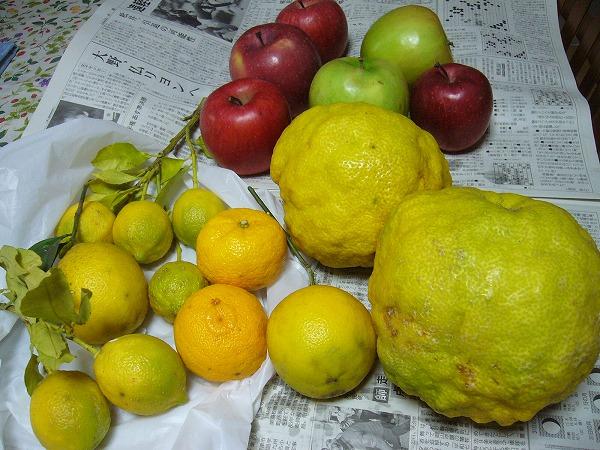 獅子柚子とレモン