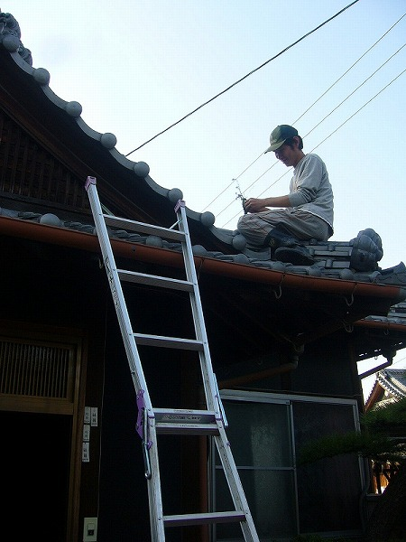 次男屋根の上梯子