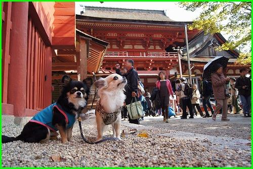 談山神社0720